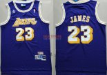 Divise Basket Personalizzate NBA L.A.Lakers NO.23 Lebron James Retro Porpora